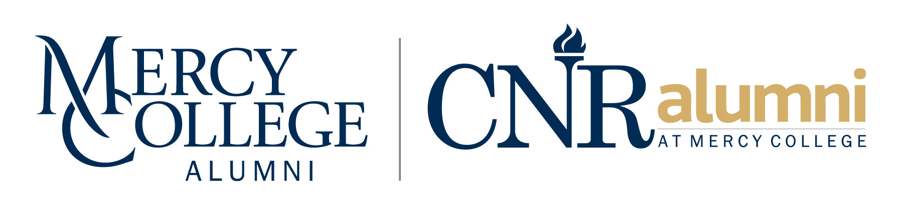 Mercy and CNR Combined Logo